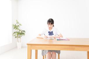勉強をする学生の写真素材 [FYI04718704]