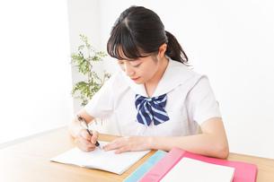 勉強をする学生の写真素材 [FYI04718714]