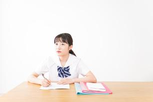 勉強をする学生の写真素材 [FYI04718723]