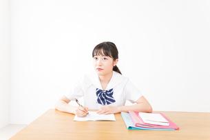 勉強をする学生の写真素材 [FYI04718728]