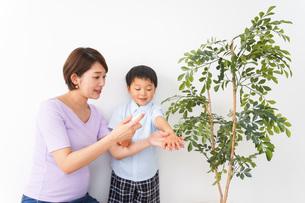 子どもにスプレーをするお母さんの写真素材 [FYI04719809]