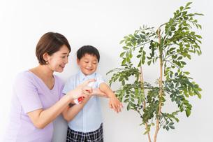 子どもにスプレーをするお母さんの写真素材 [FYI04719812]