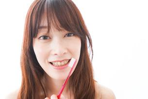 歯列矯正をする若い女性の写真素材 [FYI04719973]