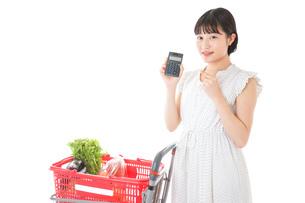 家計を計算する若い主婦の写真素材 [FYI04720315]