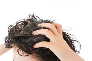 シャンプーをする若い女性の写真素材 [FYI04720400]