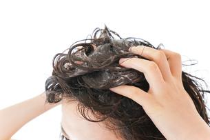 シャンプーをする若い女性の写真素材 [FYI04720405]