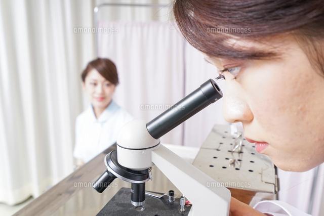 顕微鏡を見る医師と看護師の写真素材 [FYI04721149]