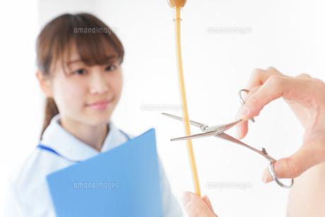 病院で働く若い看護師の写真素材 [FYI04722491]