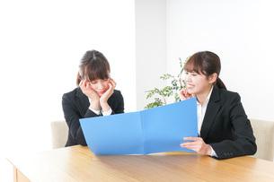 オフィスで打ち合わせをする女性の写真素材 [FYI04722686]