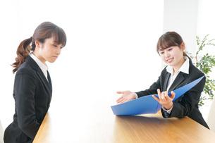 オフィスで打ち合わせをする女性の写真素材 [FYI04722969]