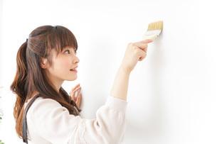 DIYをする女性の写真素材 [FYI04723082]