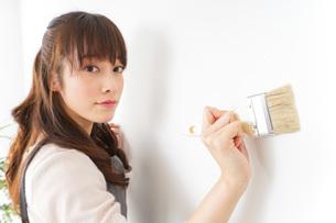DIYをする女性の写真素材 [FYI04723090]