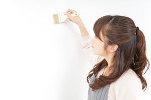 DIYをする女性の写真素材 [FYI04723091]