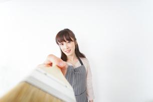 DIY・ペンキを塗る女性の写真素材 [FYI04723111]