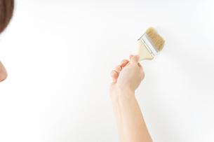 DIYをする女性の写真素材 [FYI04723113]