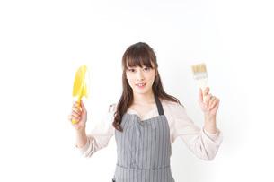 DIYをする若い女性の写真素材 [FYI04723122]