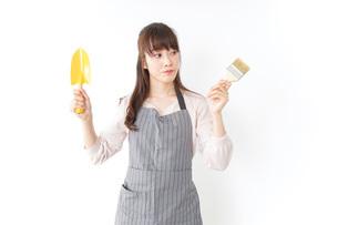 DIYをする若い女性の写真素材 [FYI04723125]