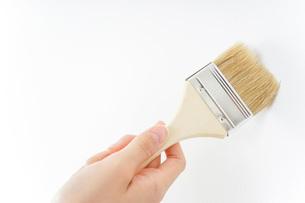 DIY・ペンキを塗る女性の写真素材 [FYI04723129]