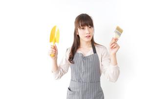 DIYをする若い女性の写真素材 [FYI04723132]