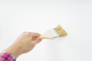 ペンキ塗り・DIYの写真素材 [FYI04723381]