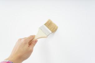 ペンキ塗り・DIYの写真素材 [FYI04723389]