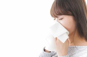風邪・花粉症で鼻をかむ女性の写真素材 [FYI04723499]