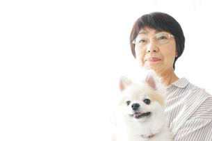 犬を飼うシニア女性の写真素材 [FYI04723635]