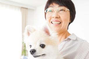 犬を飼うシニア女性の写真素材 [FYI04723636]