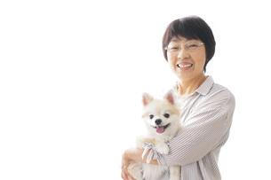 犬を買うシニア女性の写真素材 [FYI04723680]