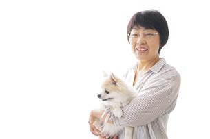 犬を買うシニア女性の写真素材 [FYI04723681]