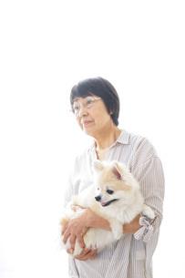 犬を買うシニア女性の写真素材 [FYI04723693]