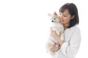犬を抱く女性・ブリーダーの写真素材 [FYI04723720]