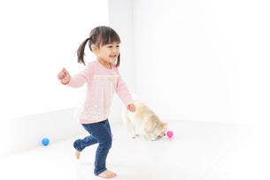 犬と一緒に遊ぶ子どもの写真素材 [FYI04723839]