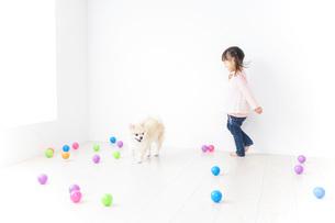 犬と一緒に遊ぶ子どもの写真素材 [FYI04723842]