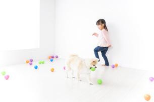 犬と一緒に遊ぶ子どもの写真素材 [FYI04723846]