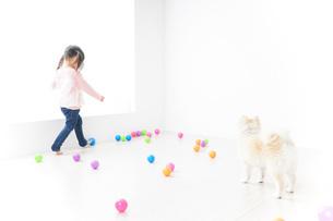 犬と一緒に遊ぶ子どもの写真素材 [FYI04723856]