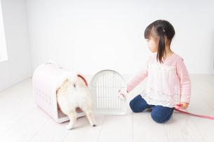 ペットの世話をする子どもの写真素材 [FYI04723877]