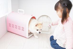 ペットの世話をする子どもの写真素材 [FYI04723886]
