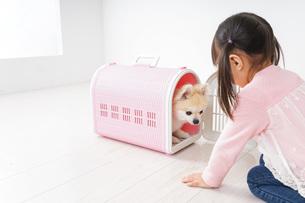 ペットの世話をする子どもの写真素材 [FYI04723891]