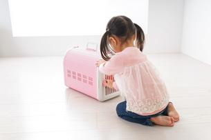 ペットの世話をする子どもの写真素材 [FYI04723894]