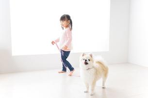 犬の散歩をする子どもの写真素材 [FYI04723896]
