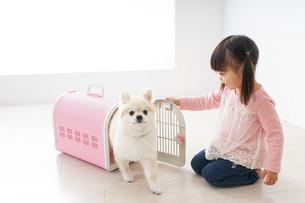 ペットの世話をする子どもの写真素材 [FYI04723897]