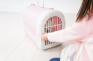ペットの世話をする子どもの写真素材 [FYI04723898]