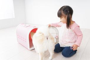 ペットの世話をする子どもの写真素材 [FYI04723899]