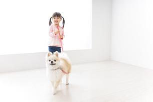 犬の散歩をする子どもの写真素材 [FYI04723903]