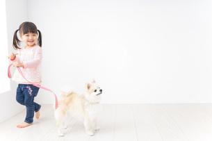 犬の散歩をする子どもの写真素材 [FYI04723904]