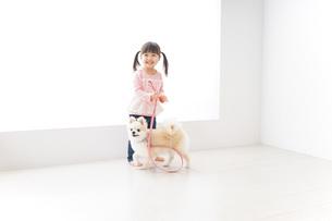 犬の散歩をする子どもの写真素材 [FYI04723905]