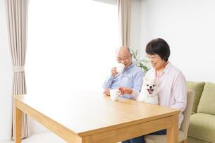 家でリラックスをするシニア夫婦の写真素材 [FYI04724088]