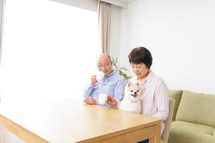 家でリラックスをするシニア夫婦の写真素材 [FYI04724089]