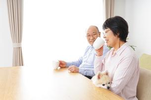 家でリラックスをするシニア夫婦の写真素材 [FYI04724102]